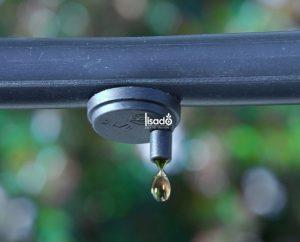 Ống tưới nhỏ giọt giá khoảng bao nhiêu/mét? Độ bền thế nào?